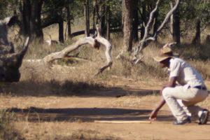 Kruger Safari on Foot Light